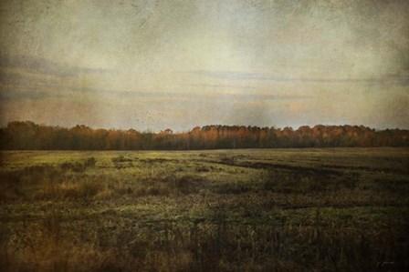 Autumn Flame by Jai Johnson art print