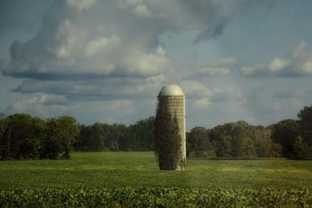 Country Beacon by Jai Johnson art print