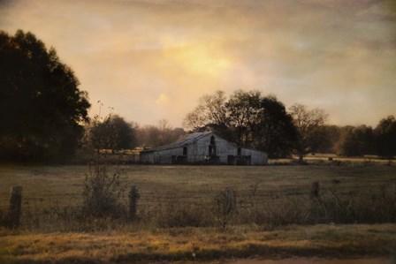 Country Heirloom by Jai Johnson art print