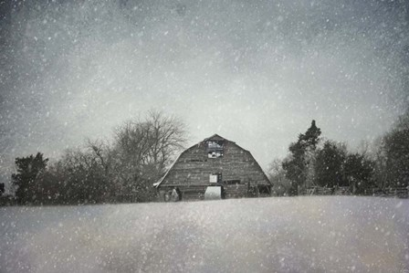 Snowing At The Old Barn by Jai Johnson art print