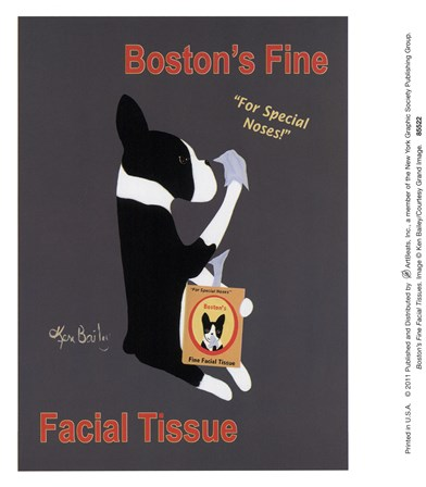 Boston's Fine Facial Tissues by Ken Bailey art print