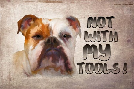 Not with My Tools by Ramona Murdock art print
