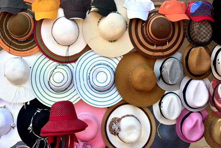 Hats Hats Hats by Ramona Murdock art print