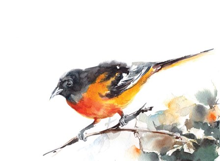 Bird by Sophia Rodionov art print