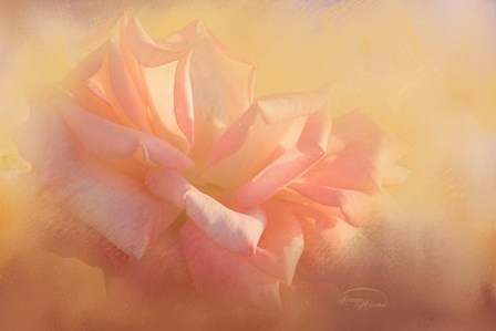 Light is Life by Ramona Murdock art print