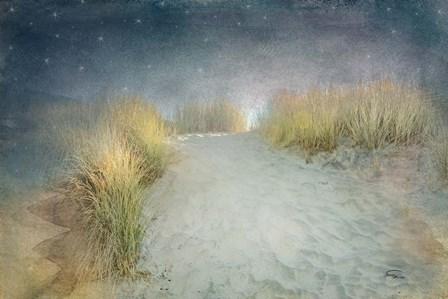 Starlight Beach by Ramona Murdock art print